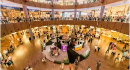 Dubai Shopping Festival – What to Expect!